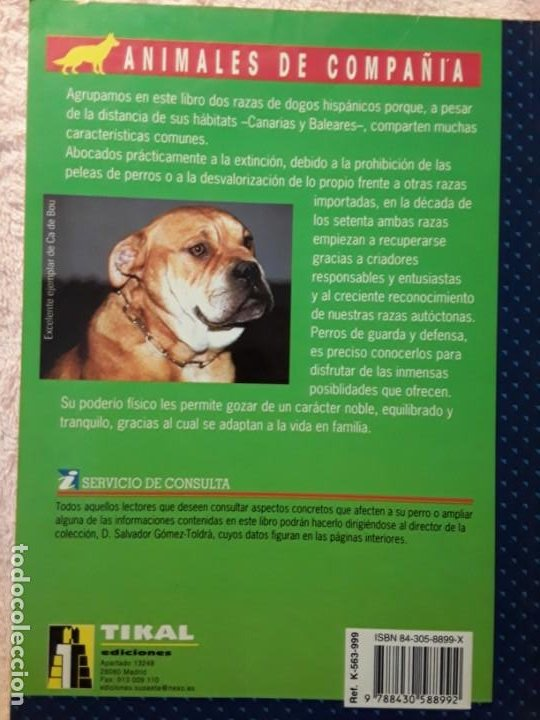 Libros de segunda mano: Dos libros sobre el perro presa canario. Manuel martin y Pascual asensi - Foto 2 - 241447735