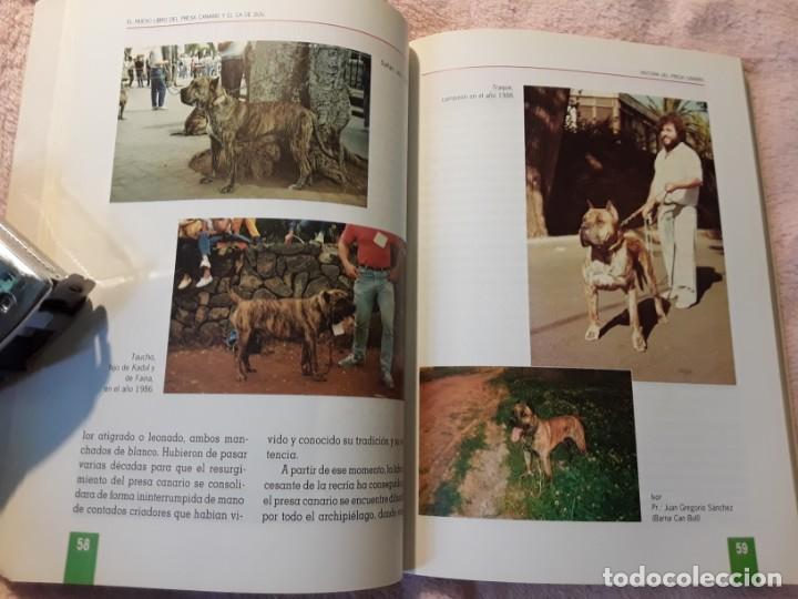 Libros de segunda mano: Dos libros sobre el perro presa canario. Manuel martin y Pascual asensi - Foto 6 - 241447735
