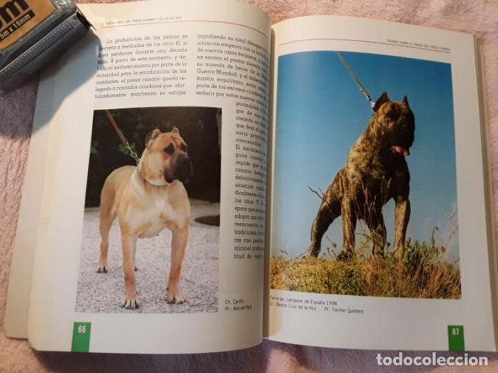 Libros de segunda mano: Dos libros sobre el perro presa canario. Manuel martin y Pascual asensi - Foto 8 - 241447735