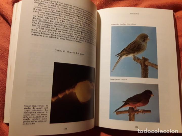 Libros de segunda mano: Le canari. Maurice Pomarede. Precis de canariculture (canarios, canaricultura) En francés - Foto 9 - 242001360