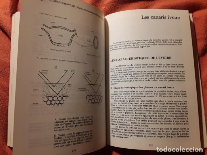 Libros de segunda mano: Le canari. Maurice Pomarede. Precis de canariculture (canarios, canaricultura) En francés - Foto 10 - 242001360