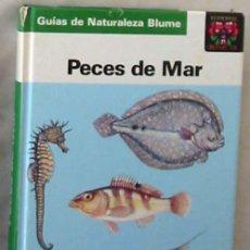 Libros de segunda mano: PECES DE MAR - FRITZ TEROFAL - GUÍAS DE NATURALEZA BLUME - ED. BLUME 1989 - VER FOTOS. Lote 204600231