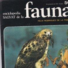 Libros de segunda mano: FASCICULO Nº 50 DE FAUNA DE FELIX RODRIGUEZ DE LA FUENTE EDITADO POR SALVAT EN 1970. Lote 243033375