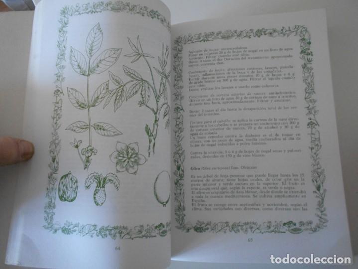 Libros de segunda mano: HERBORISTERIA CASERA. SANOS Y JOVENES CON LAS HIERBAS MEDICINALES. FRANCA NERI. EDITORIAL DE VECCHI. - Foto 2 - 243607100