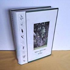 Libros de segunda mano: FCO. JAVIER CANTERO Y ANTONIO LOPEZ - ARBOLES SINGULARES DE MADRID - MADRID 1993. Lote 244958185
