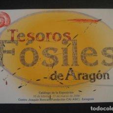 Libros de segunda mano: TESOROS FOSILES DE ARAGON. PALEONTOLOGIA, AMMONITES, TRILOBITES, DINOSAURIOS. Lote 282962228