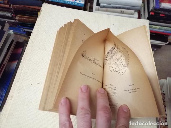 Libros de segunda mano: HISTÒRIA DE LA CONEIXENÇA GEOLÒGICA DE LILLA DE MALLORCA . BARTOMEU DARDER . MOLL . 1946 - Foto 8 - 247443620