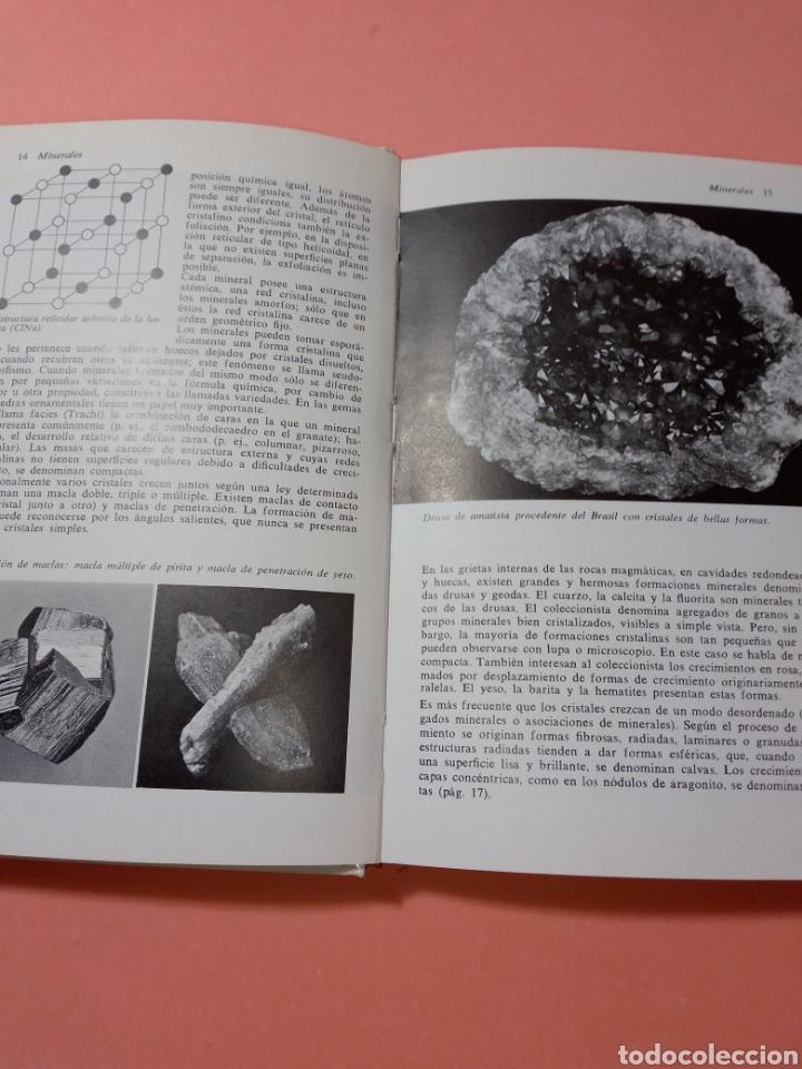Libros de segunda mano: 1988 ROCAS Y MINERALES, WALTER SCHUMANN, MAS DE 399 FOTOS COLOR, ED. OMEGA, TAPA DURA - Foto 3 - 247568010