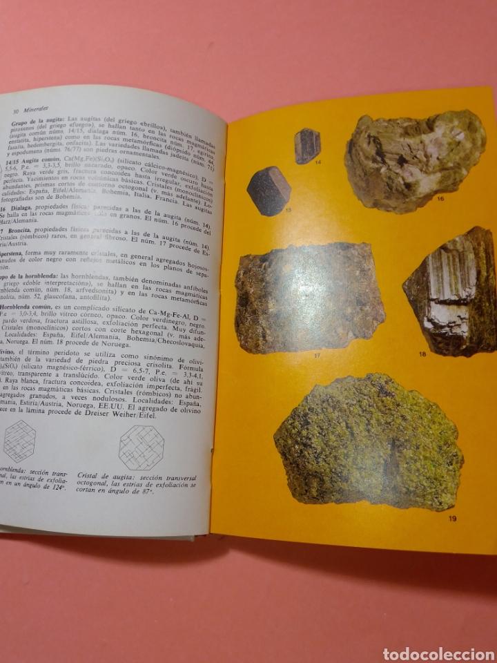 Libros de segunda mano: 1988 ROCAS Y MINERALES, WALTER SCHUMANN, MAS DE 399 FOTOS COLOR, ED. OMEGA, TAPA DURA - Foto 4 - 247568010
