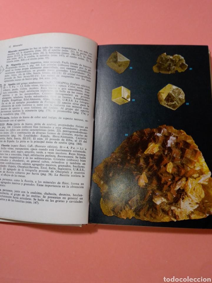 Libros de segunda mano: 1988 ROCAS Y MINERALES, WALTER SCHUMANN, MAS DE 399 FOTOS COLOR, ED. OMEGA, TAPA DURA - Foto 5 - 247568010