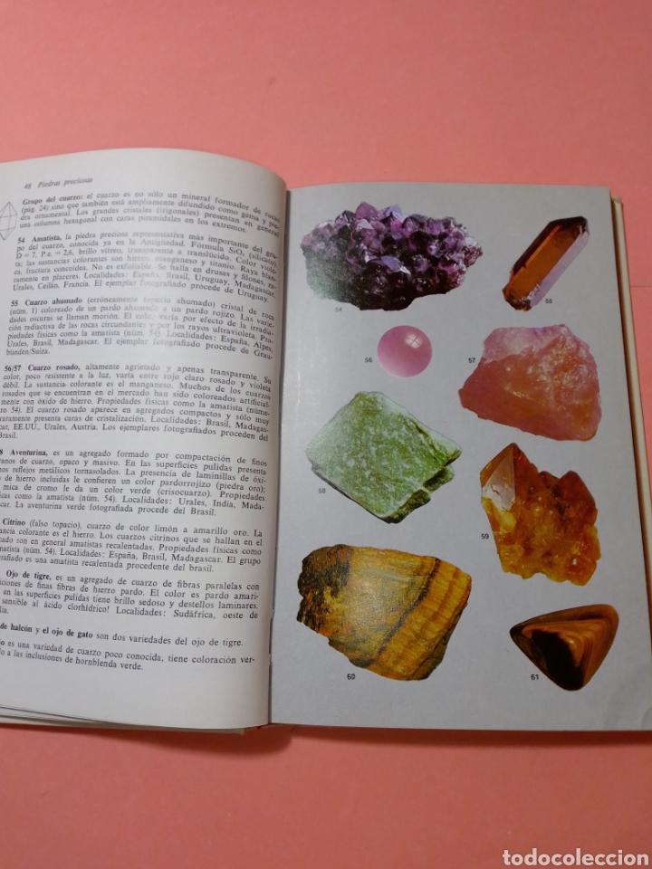 Libros de segunda mano: 1988 ROCAS Y MINERALES, WALTER SCHUMANN, MAS DE 399 FOTOS COLOR, ED. OMEGA, TAPA DURA - Foto 6 - 247568010