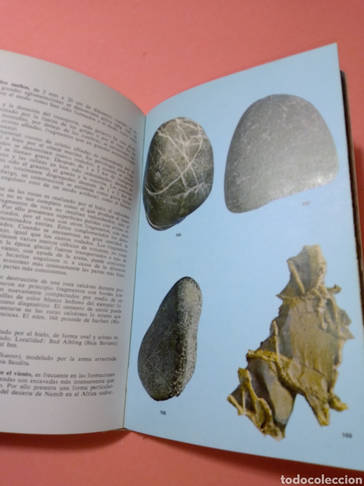 Libros de segunda mano: 1988 ROCAS Y MINERALES, WALTER SCHUMANN, MAS DE 399 FOTOS COLOR, ED. OMEGA, TAPA DURA - Foto 10 - 247568010