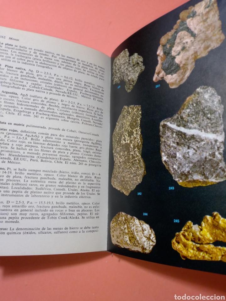 Libros de segunda mano: 1988 ROCAS Y MINERALES, WALTER SCHUMANN, MAS DE 399 FOTOS COLOR, ED. OMEGA, TAPA DURA - Foto 11 - 247568010