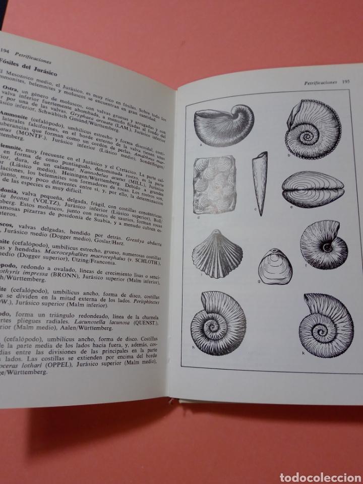 Libros de segunda mano: 1988 ROCAS Y MINERALES, WALTER SCHUMANN, MAS DE 399 FOTOS COLOR, ED. OMEGA, TAPA DURA - Foto 12 - 247568010