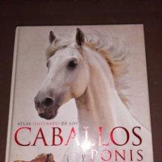Libros de segunda mano: ATLAS ILUSTRADO DE LOS CABALLOS Y PONIS , SUSAETA TAPA DURA. Lote 251096445