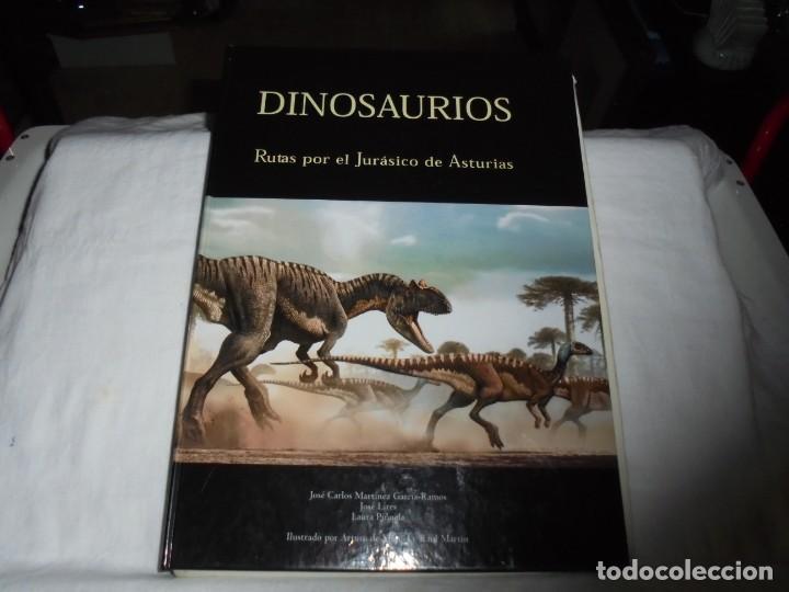 DINOSAURIOS RUTAS POR EL JURASICO DE ASTURIAS.J.C.MARTINEZ/LIRES/PIÑUELA.LA VOZ DE ASTURIAS 2002 (Libros de Segunda Mano - Ciencias, Manuales y Oficios - Paleontología y Geología)