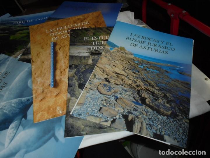 Libros de segunda mano: DINOSAURIOS RUTAS POR EL JURASICO DE ASTURIAS.J.C.MARTINEZ/LIRES/PIÑUELA.LA VOZ DE ASTURIAS 2002 - Foto 7 - 252534205