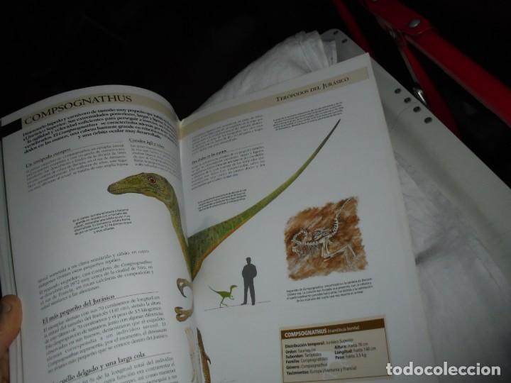 Libros de segunda mano: DINOSAURIOS RUTAS POR EL JURASICO DE ASTURIAS.J.C.MARTINEZ/LIRES/PIÑUELA.LA VOZ DE ASTURIAS 2002 - Foto 9 - 252534205