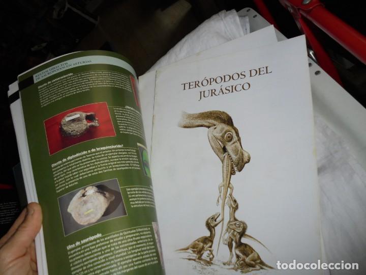Libros de segunda mano: DINOSAURIOS RUTAS POR EL JURASICO DE ASTURIAS.J.C.MARTINEZ/LIRES/PIÑUELA.LA VOZ DE ASTURIAS 2002 - Foto 10 - 252534205
