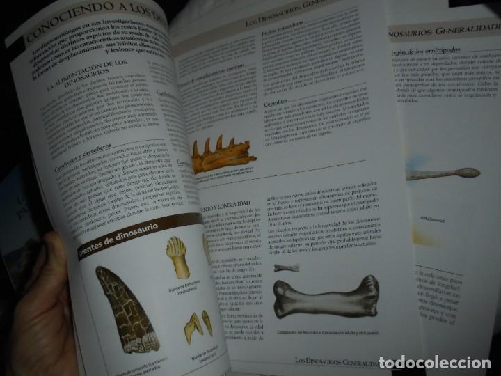 Libros de segunda mano: DINOSAURIOS RUTAS POR EL JURASICO DE ASTURIAS.J.C.MARTINEZ/LIRES/PIÑUELA.LA VOZ DE ASTURIAS 2002 - Foto 13 - 252534205