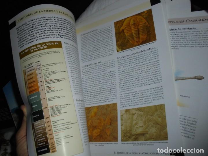 Libros de segunda mano: DINOSAURIOS RUTAS POR EL JURASICO DE ASTURIAS.J.C.MARTINEZ/LIRES/PIÑUELA.LA VOZ DE ASTURIAS 2002 - Foto 14 - 252534205