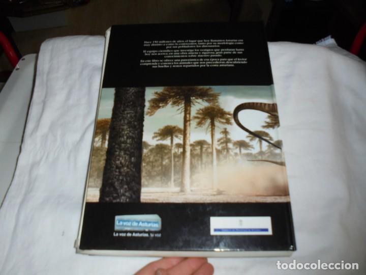 Libros de segunda mano: DINOSAURIOS RUTAS POR EL JURASICO DE ASTURIAS.J.C.MARTINEZ/LIRES/PIÑUELA.LA VOZ DE ASTURIAS 2002 - Foto 15 - 252534205