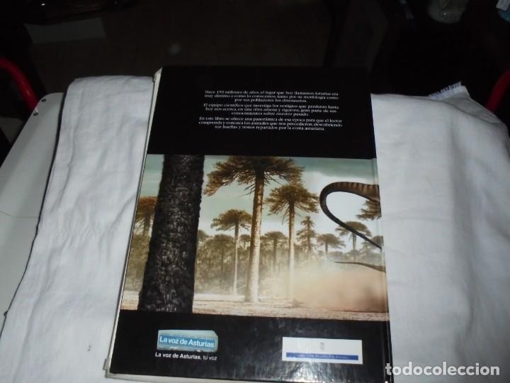 Libros de segunda mano: DINOSAURIOS RUTAS POR EL JURASICO DE ASTURIAS.J.C.MARTINEZ/LIRES/PIÑUELA.LA VOZ DE ASTURIAS 2002 - Foto 16 - 252534205