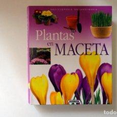 Libri di seconda mano: PLANTAS EN MACETA. SUSAETA. BIBLIOTECA DE LA JARDINERÍA. Lote 253675760