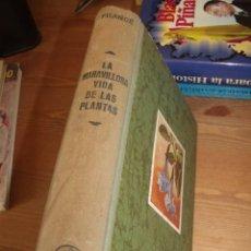 Libros de segunda mano: LA MARAVILLOSA VIDA DE LAS PLANTAS FRANCE ED. LABOR 1949. Lote 254409240