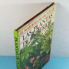 Libros de segunda mano: EL MARAVILLOSO MUNDO DE LAS PLANTAS DE INTERIOR, ANN BONAIR, TELVA 94 PAGINAS 1978. Lote 254991305