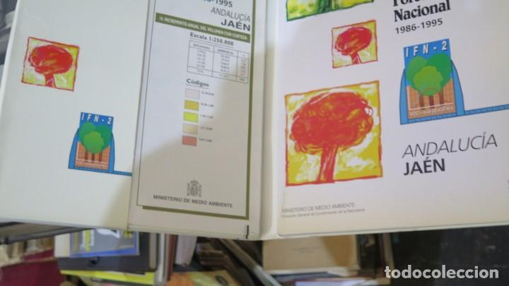Libros de segunda mano: SEGUNDO INVENTARIO FORESTAL NACIONAL 1986-1995. JAEN - Foto 2 - 255003200