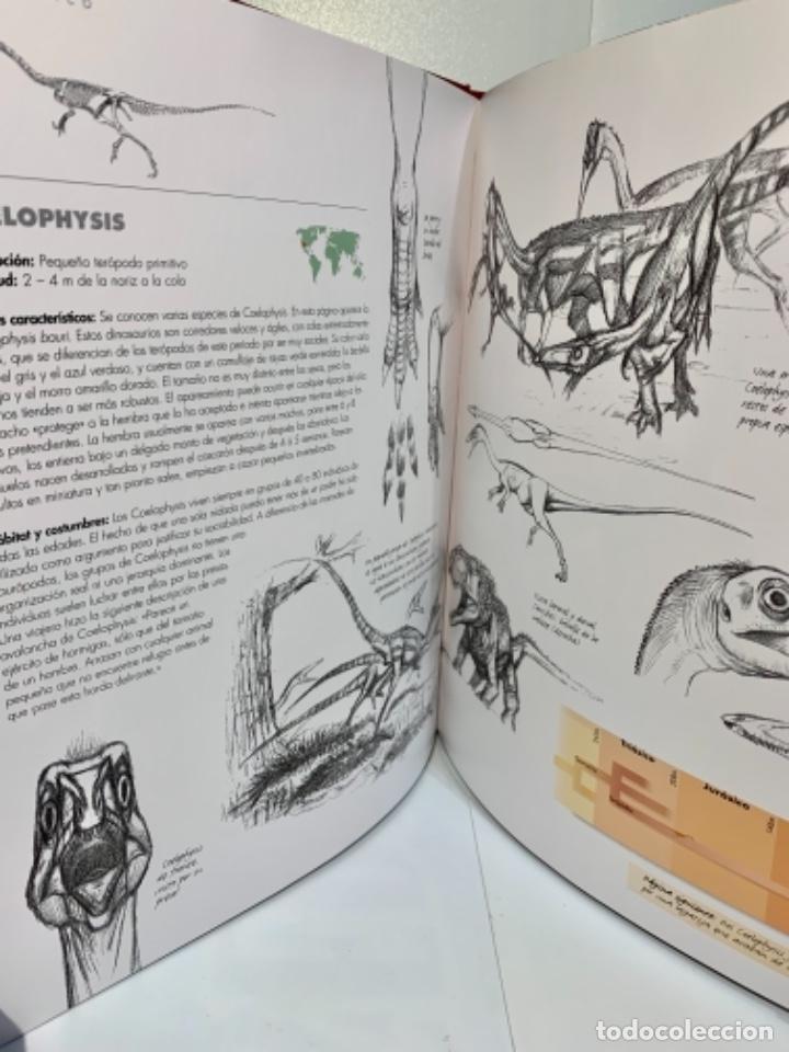 Libros de segunda mano: Dinosaurios. Guía de Campo. Ed. Océano. 1era edición Octubre 2003. Henry Gee, Luis V. Rey. Impecable - Foto 11 - 255004420