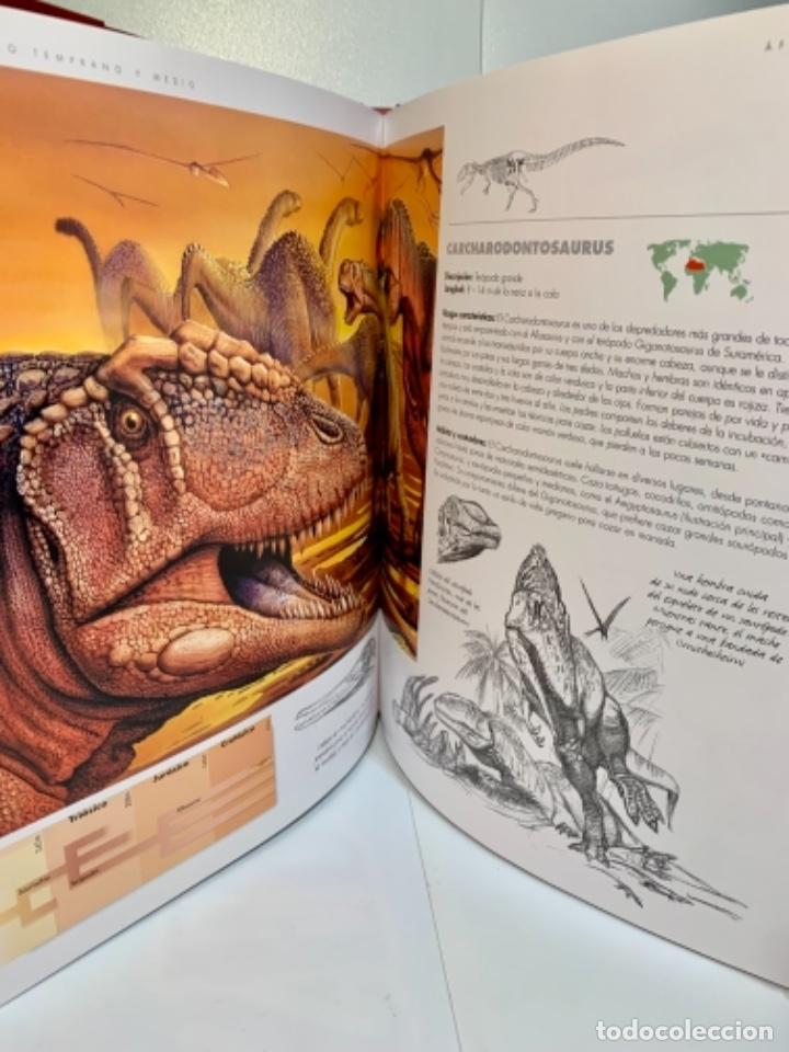 Libros de segunda mano: Dinosaurios. Guía de Campo. Ed. Océano. 1era edición Octubre 2003. Henry Gee, Luis V. Rey. Impecable - Foto 13 - 255004420