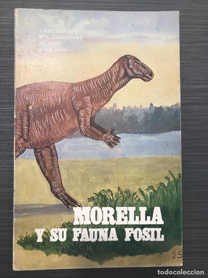 MORELLA Y SU FAUNA FÓSIL - J.VTE. SANTAFE / Mª L. CASANOVAS / J.L. SANZ / S. CALZADA - 1982 (Libros de Segunda Mano - Ciencias, Manuales y Oficios - Paleontología y Geología)