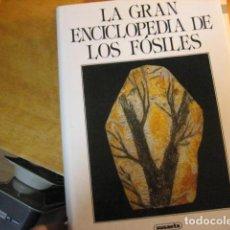 Libros de segunda mano: LA GRAN ENCICLOPEDIA DE LOS FÓSILES - 1989 ED. SUSAETA / IMP. CHEQUIA ...¡NUEVO!. Lote 257728970
