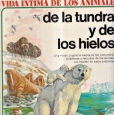 Libros de segunda mano: VIDA ÍNTIMA DE LOS ANIMALES DE LA TUNDRA Y DE LOS HIELOS - N 7 EDITORIAL AURIGA 1974. Lote 257857120
