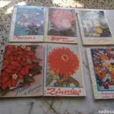 Libros de segunda mano: MANUALES PARA EL CULTIVO DE FLORES Y PLANTAS KANDA. Lote 261694350