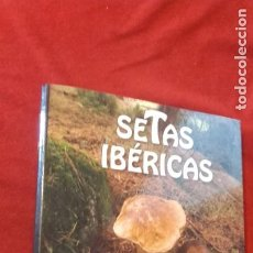 Libros de segunda mano: SETAS IBERICAS - ED. PLANETA DE AGOSTINI - CARPETA - 192 FICHAS RETRACTILADAS PARA ESTRENAR. Lote 262154775