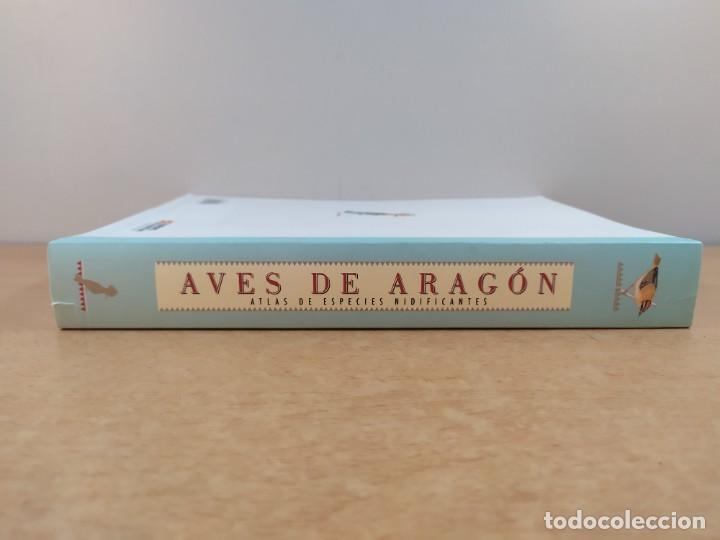 Libros de segunda mano: AVES DE ARAGÓN. ATLAS DE ESPECIES NIDIFICANTES / 2ªed. 2000. DIPUTACIÓN GENERAL DE ARAGÓN - Foto 5 - 262261640