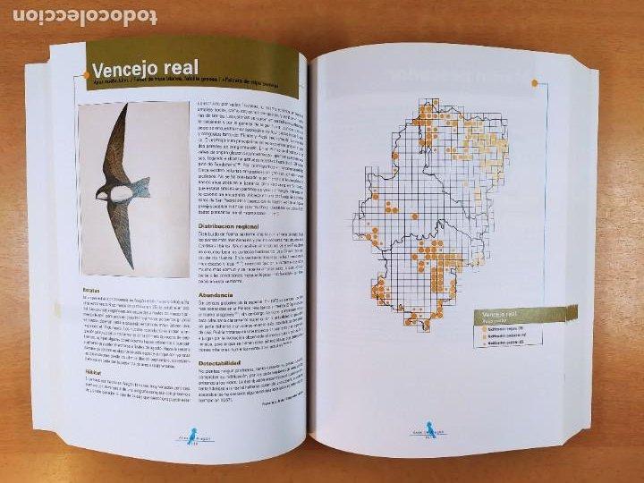 Libros de segunda mano: AVES DE ARAGÓN. ATLAS DE ESPECIES NIDIFICANTES / 2ªed. 2000. DIPUTACIÓN GENERAL DE ARAGÓN - Foto 3 - 262261640