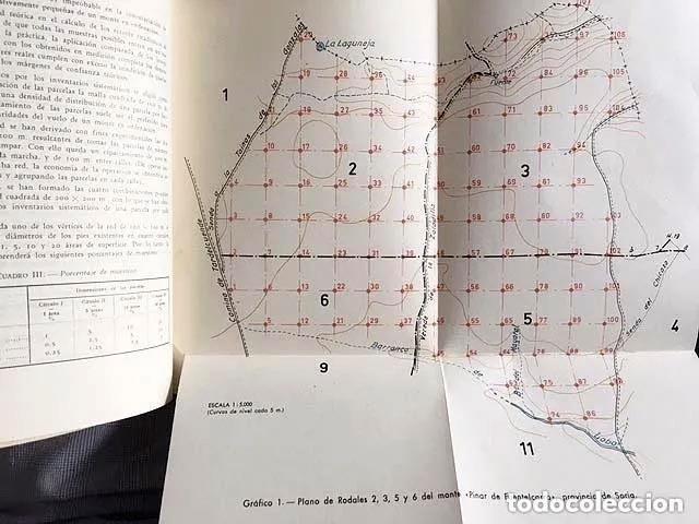ANALES 1962 (PLANTACIONES DE EUCALIPTOS; MICORRIZAS EN PINOS; RESINAS; ETC.) INSTITUTO FORESTAL (Libros de Segunda Mano - Ciencias, Manuales y Oficios - Biología y Botánica)