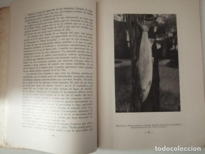 Libros de segunda mano: LA RIQUEZA PISCICOLA DE LOS RÍOS DEL NORTE DE ESPAÑA 1948 Firmado por el autor FOTOS LÁMINAS - Foto 3 - 267285159