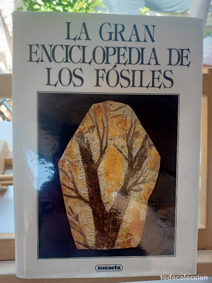 LA GRAN ENCICLOPEDIA DE LOS FÓSILES VOJTECH TUREK JAROSLAV MAREK JOSEF BENES SUSAETA 1989 (Libros de Segunda Mano - Ciencias, Manuales y Oficios - Paleontología y Geología)