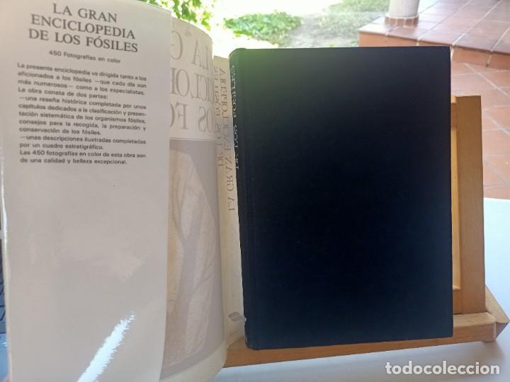 Libros de segunda mano: LA GRAN ENCICLOPEDIA DE LOS FÓSILES Vojtech Turek Jaroslav Marek Josef Benes SUSAETA 1989 - Foto 2 - 269090733