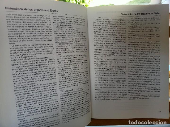 Libros de segunda mano: LA GRAN ENCICLOPEDIA DE LOS FÓSILES Vojtech Turek Jaroslav Marek Josef Benes SUSAETA 1989 - Foto 6 - 269090733