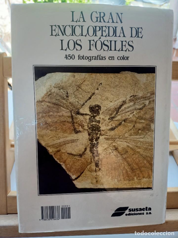Libros de segunda mano: LA GRAN ENCICLOPEDIA DE LOS FÓSILES Vojtech Turek Jaroslav Marek Josef Benes SUSAETA 1989 - Foto 25 - 269090733