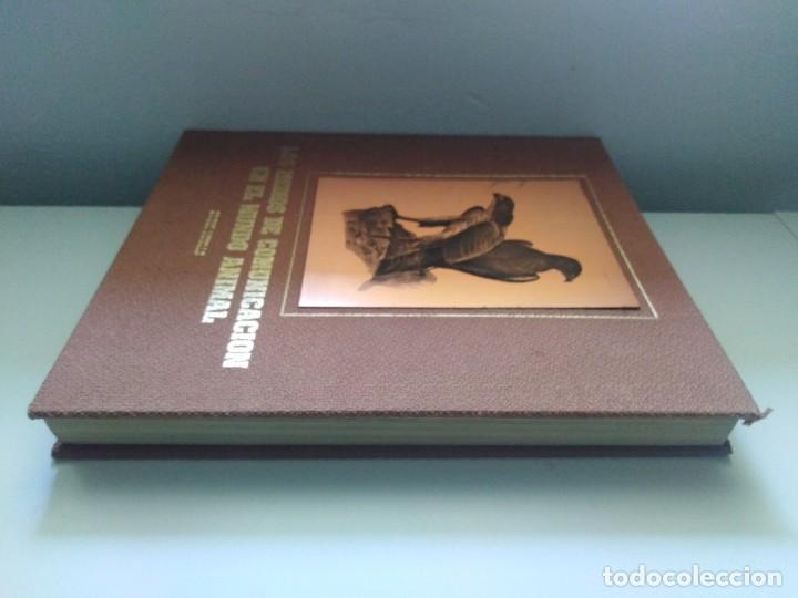 Libros de segunda mano: LOS MEDIOS DE COMUNICACION EN EL MUNDO ANIMAL COSME MORILLO EDITADO CYR CONSULTIN 1978. - Foto 2 - 269093143