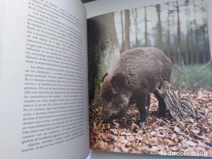 Libros de segunda mano: LOS MEDIOS DE COMUNICACION EN EL MUNDO ANIMAL COSME MORILLO EDITADO CYR CONSULTIN 1978. - Foto 5 - 269093143