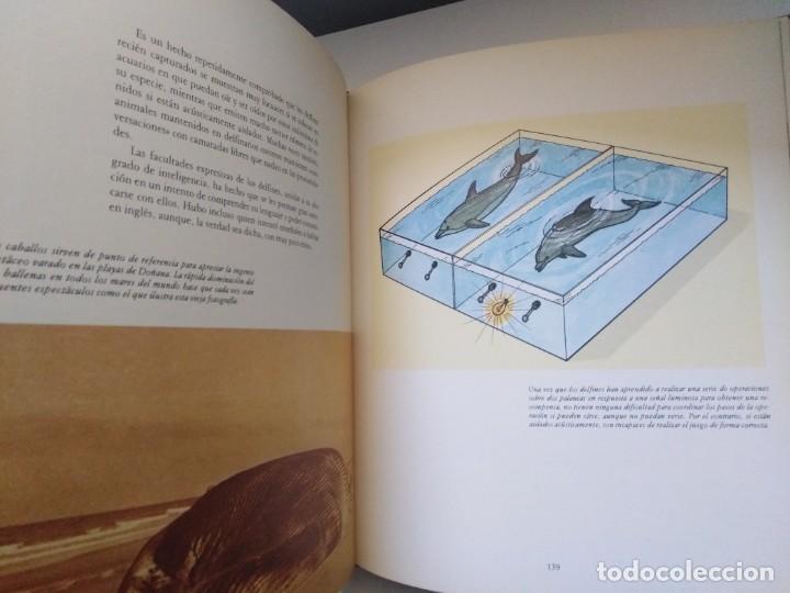 Libros de segunda mano: LOS MEDIOS DE COMUNICACION EN EL MUNDO ANIMAL COSME MORILLO EDITADO CYR CONSULTIN 1978. - Foto 7 - 269093143