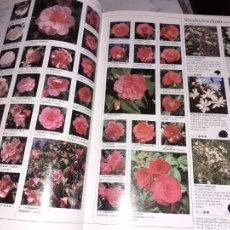 Libros de segunda mano: IMPRESIONANTE LIBRO DE PLANTAS...EN INGLES..VER FOTOS... Lote 269453813